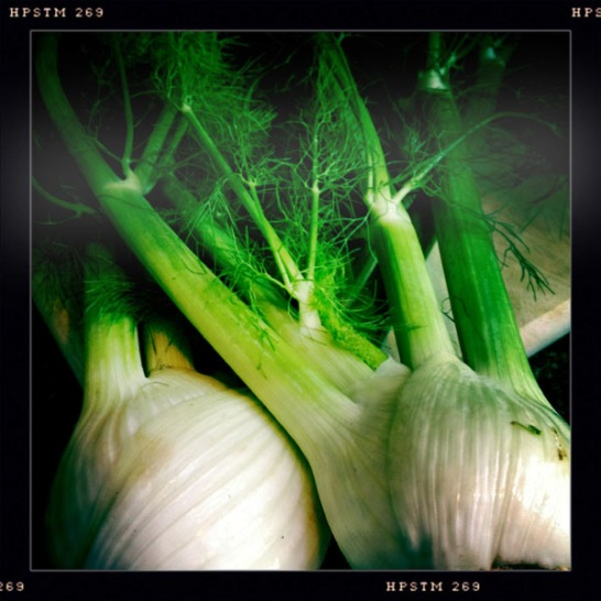 Wash Fennel thoroughly and pat dry. Remove the fronds from the bulbs. Set bulbs aside.